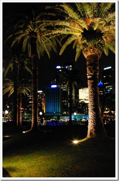 Vivid Dawes Point Night