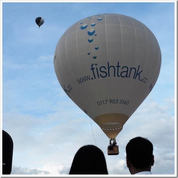 Fishtank G-CDDN