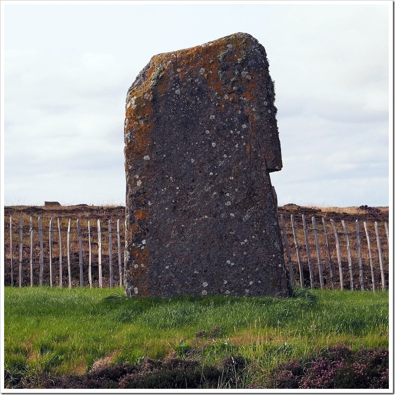 Ring of Brodgar #3