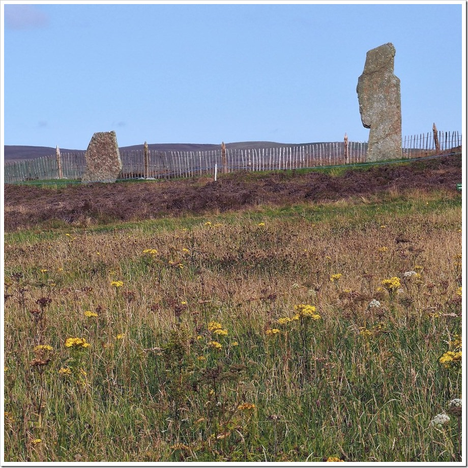 Ring of Brodgar #7