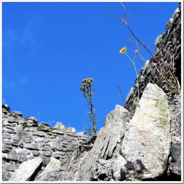 Blue Skies at Kendal Castle