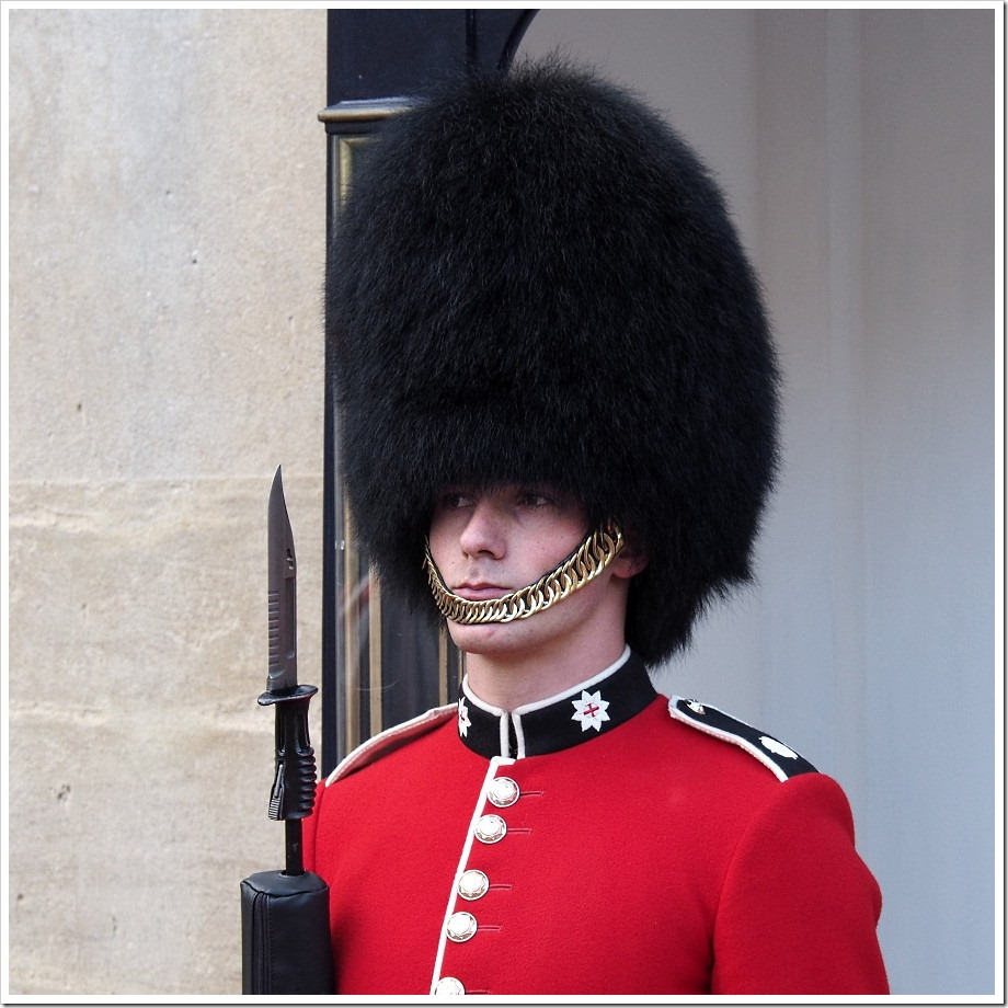 Coldstream Guard Close-up