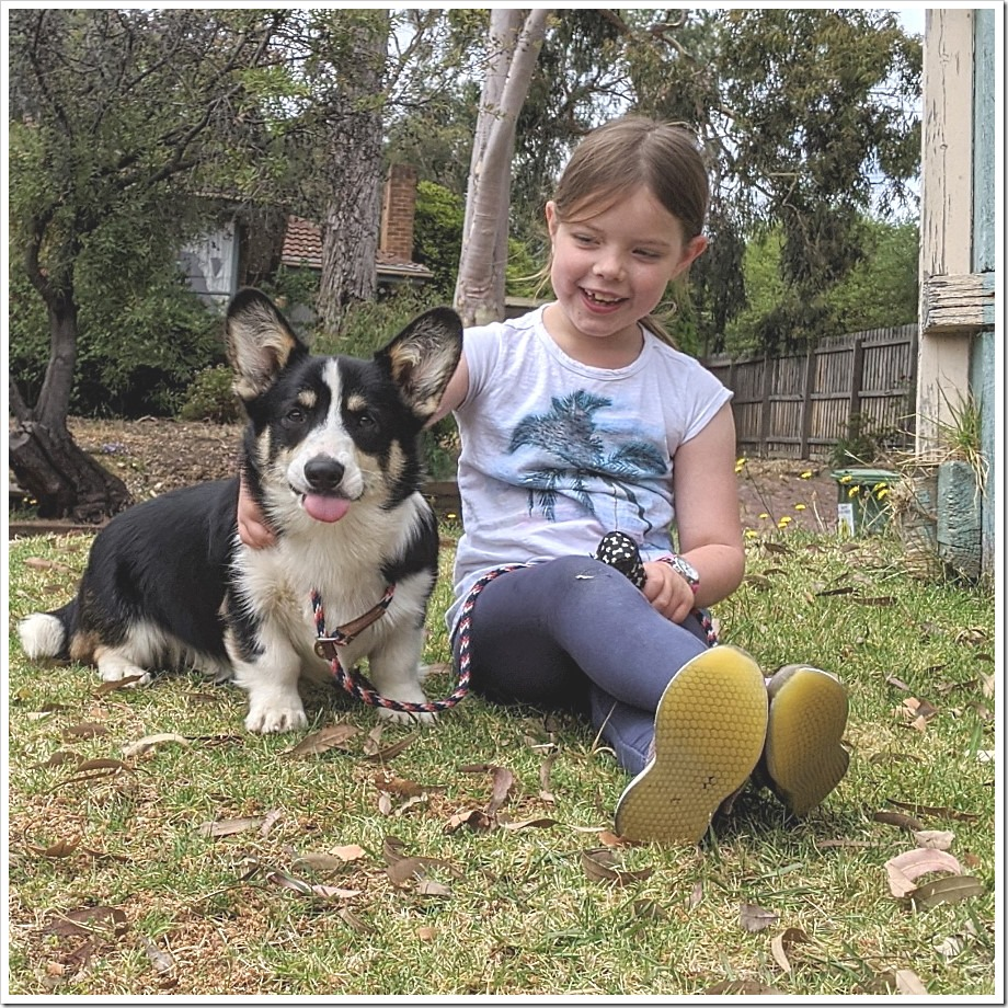 Barkley and Zoe